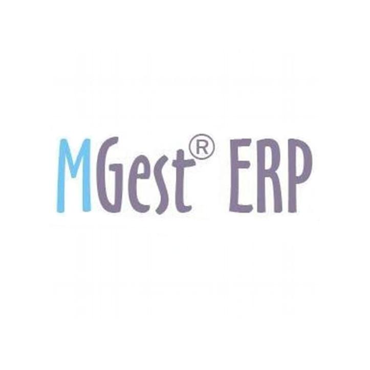 I-Nercia Servicios Informáticos partners Google AdWords partners MGest ERP