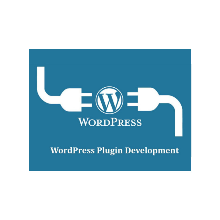 I-Nercia Servicios Informáticos Wordpress Plugin Developers