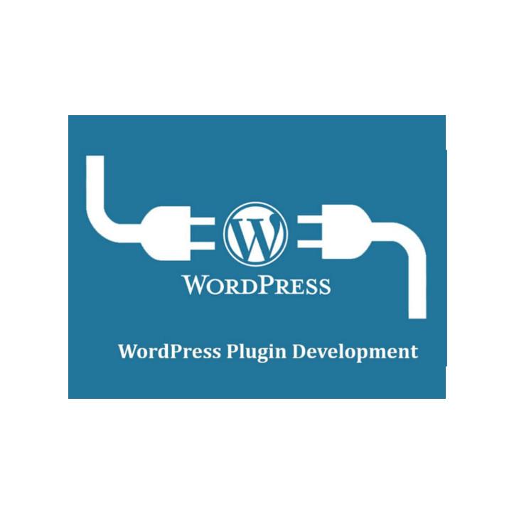 I-Nercia Servicios Informáticos Wordpress Plugin Developers